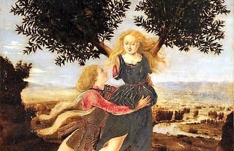 Δάφνη. Η αγαπημένη του Απόλλωνα και της μαγειρικής.